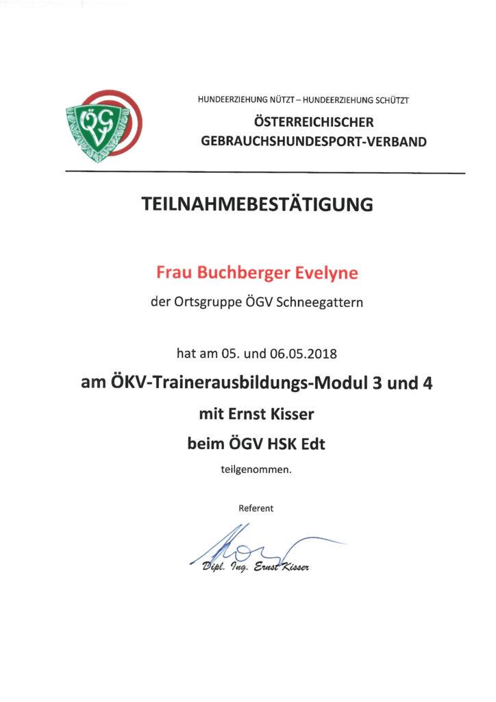 Ausbildung zum ÖKV Trainer, Modul 3 & 4